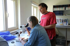 Archaeobotany Field Course 2015